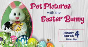 Pet Pictures with the Easter Bunny 2018 @ Pet Spas & Suites | Albany | New York | United States
