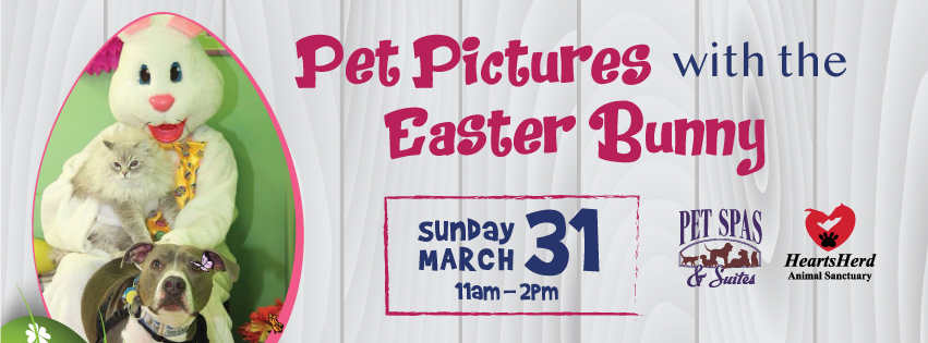 pet pics with the easter bunny 2018